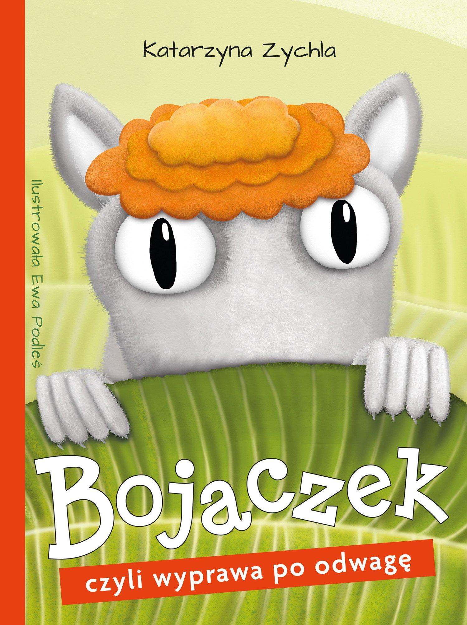 Bojaczek, czyli wyprawa po odwagę książka dla dzieci wydawnictwa skrzat