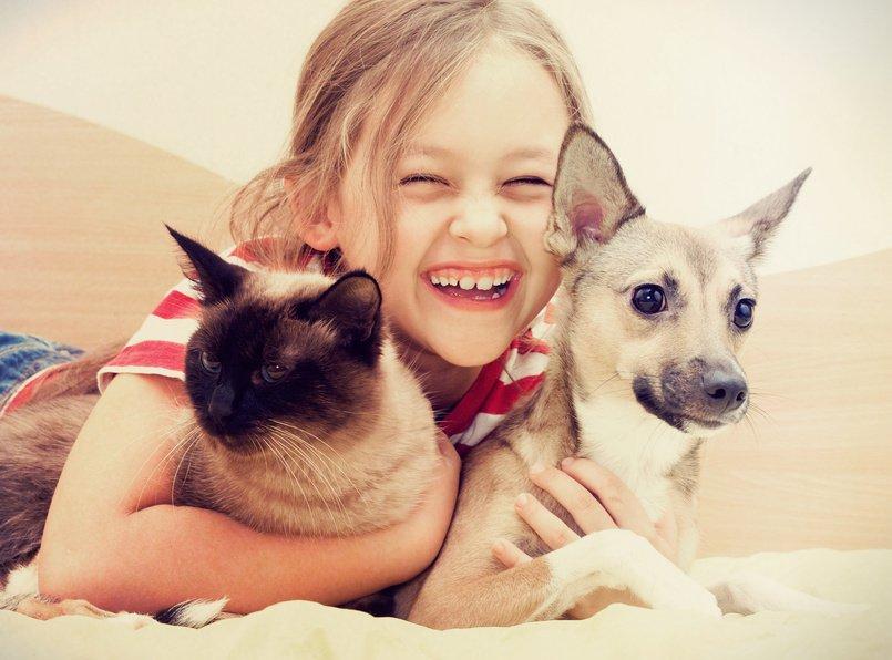 Dziecko pies i kot