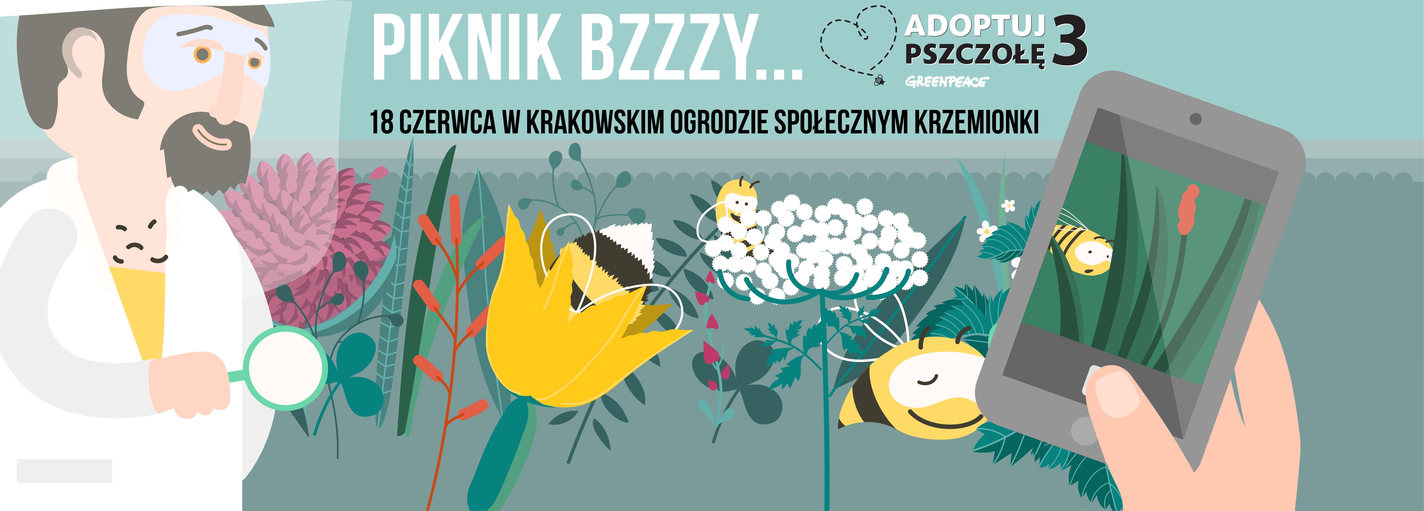 piknik krakow