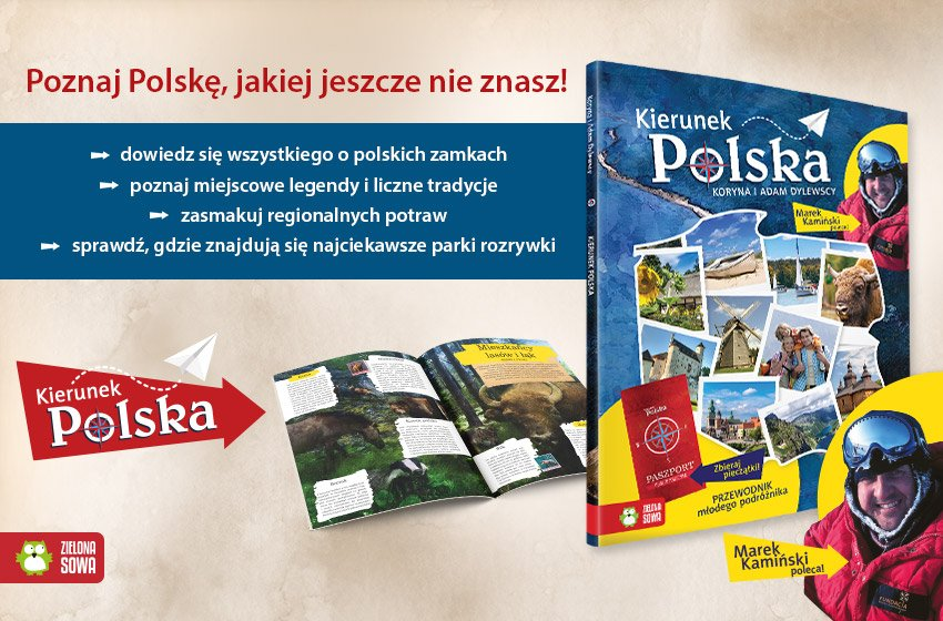 Zielona sowa kierune Polska