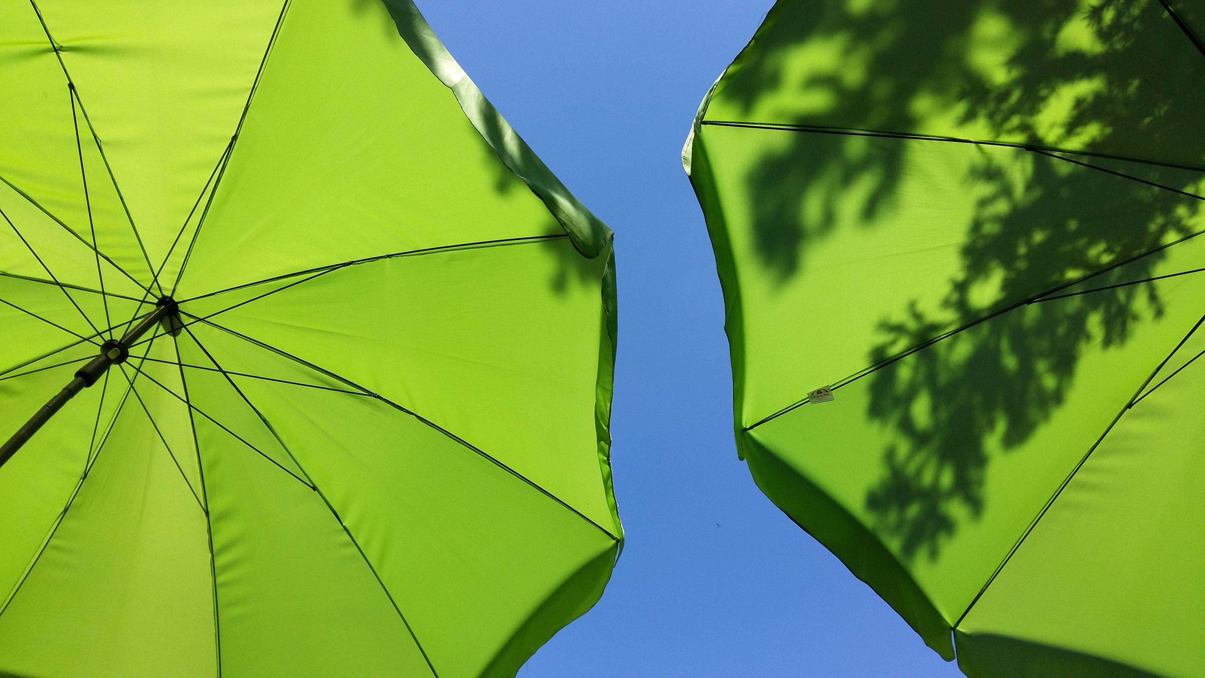 Pod parasolkami. Fot. Julia Dobrzańska