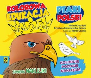 Ptaki Polski kolorowanka