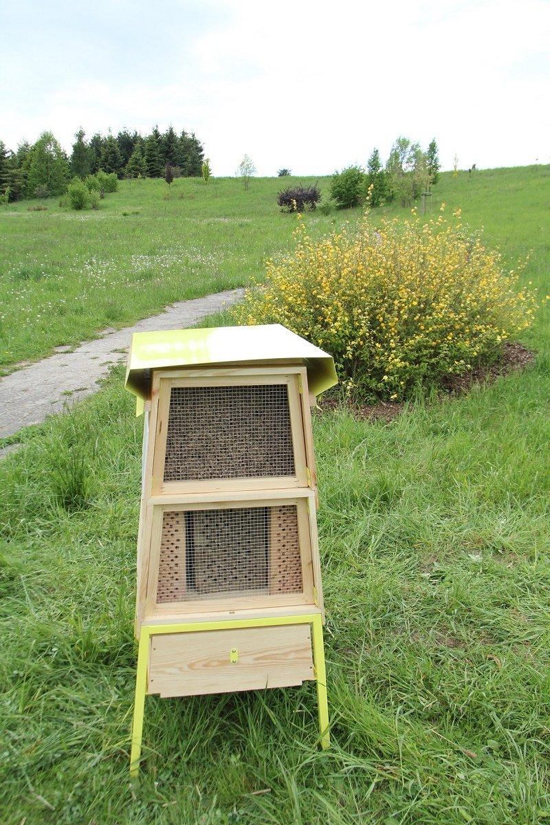 IV Ogólnopolski Wielki Dzień Pszczół