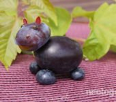 Neologopedia - ogrodowe-zabawki - hipopotam