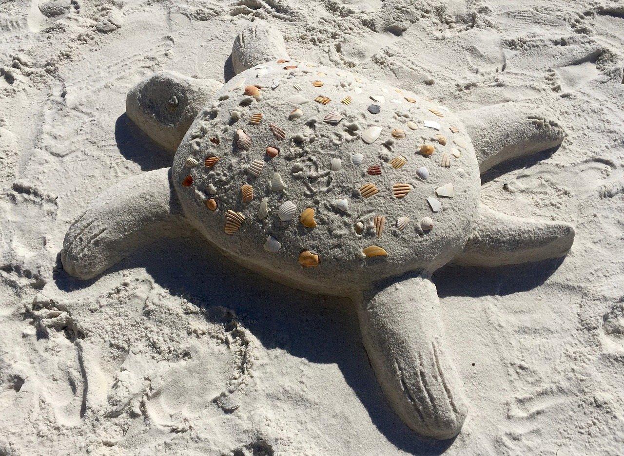 zabawy dzieckiem na plaży