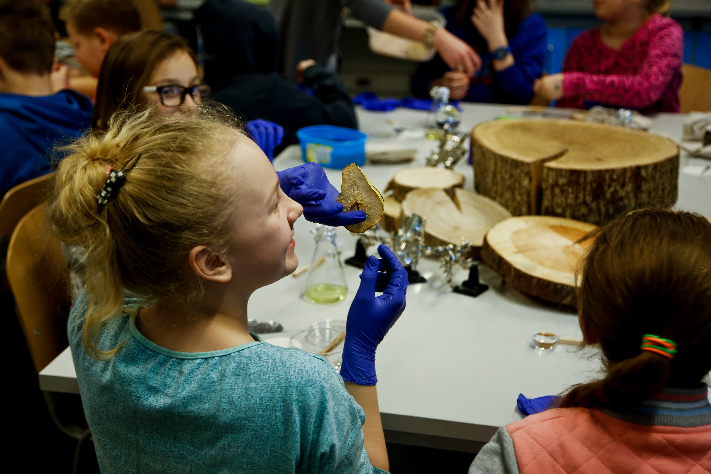 warsztaty dla dzieic w muzeum morskim