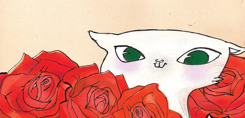 Kotek Włodek