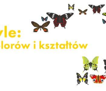 Motyle – szał barw i kształtów