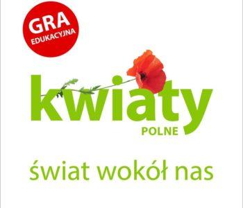 Kwiaty polne edukacyjne memo dla dzieci