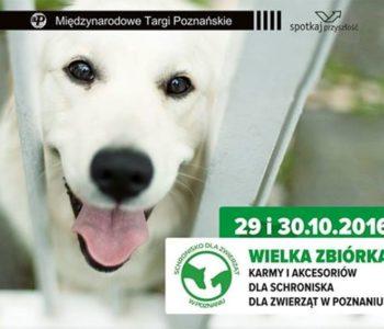 zbiórka dla zwierząt Targi Poznań