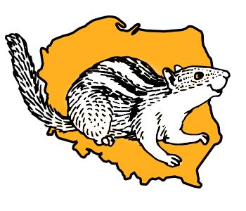 Abonament Premium Ogólnopolski