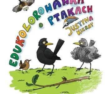 Edukolorowanka o ptakach