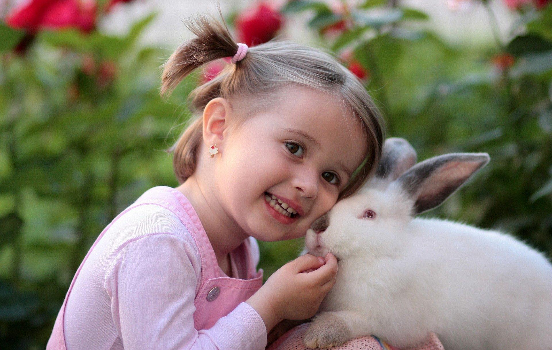 na omoc królikom, narysuj królika akcja
