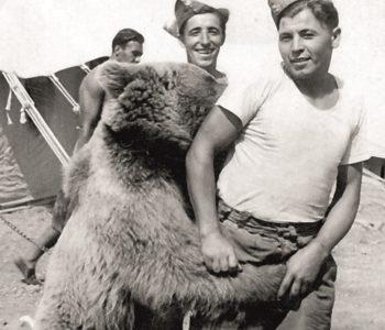 ZOO w Poznaniu - niedźwiedź