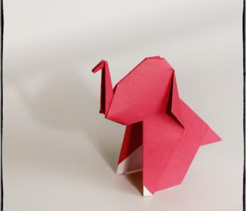 origami - słonik gotowy