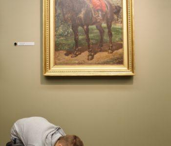 muzeum pałac herbsta obrazoinspiracje