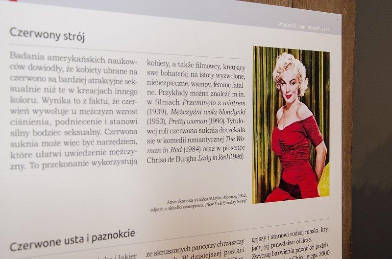 Dzień Kobiet w Muzeum