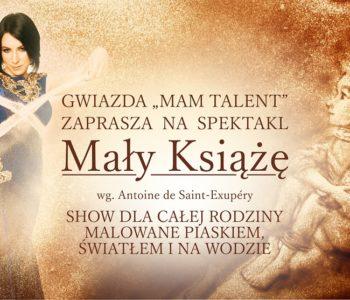 Mały_Książę2 Teatr Piasku Gdynia