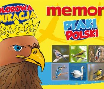 Memory Ptaki Polski. Kolorowa Edukacja. Recenzja