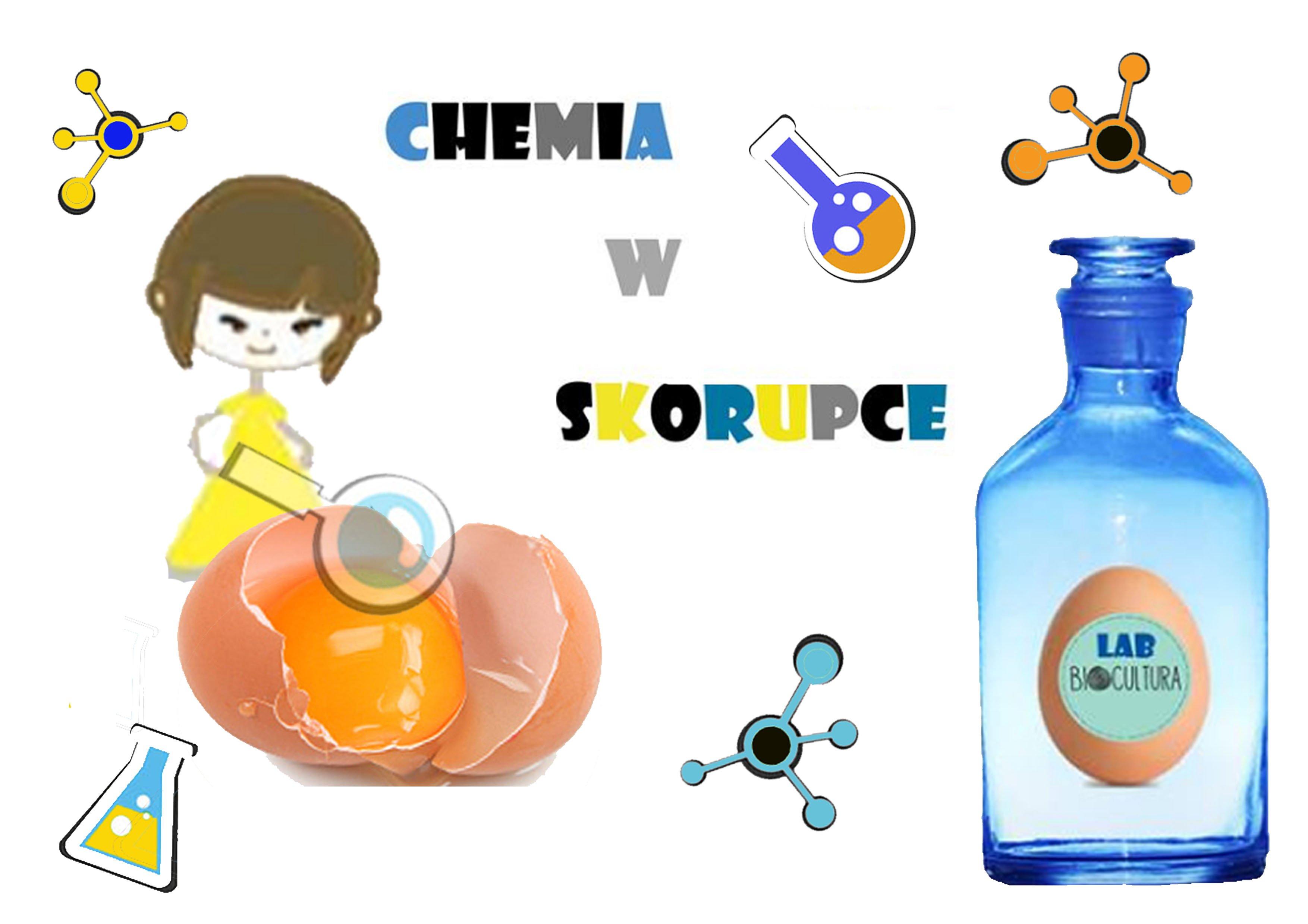 chemia_w_skorupceA4 kopia