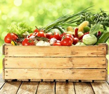 warzywa nowalijki alergia