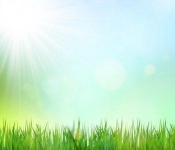 Placowe Przedszkole - powitanie wiosny