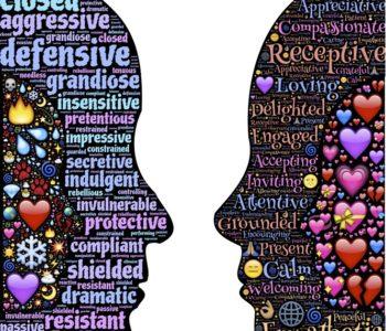 fundacja roro empatia warsztaty