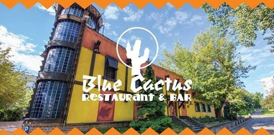 blue cactus animacje