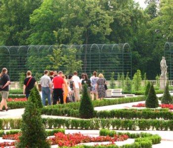 Rośliny z królewskiego stołu | warsztaty przyrodnicze w Wilanowie