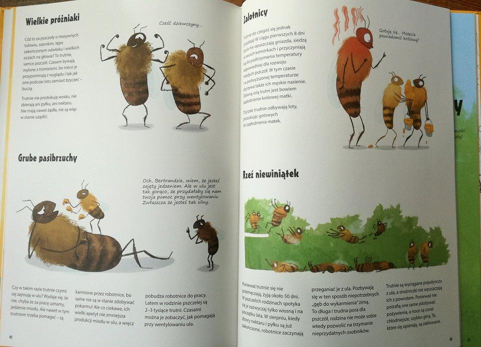 Wszystko o pszczołach ilustracje