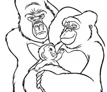 Kolorowanka Mały Tarzan do wydruku dla dzieci