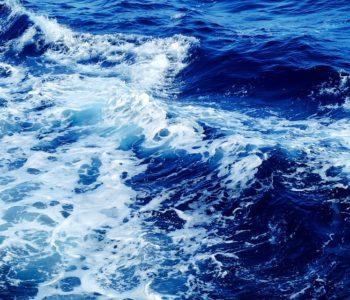 morze wakacje bezpieczeństwo 2017 lato w Gdyni