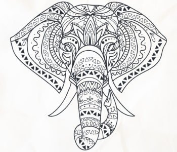 Kolorowanka antystresowa słoń