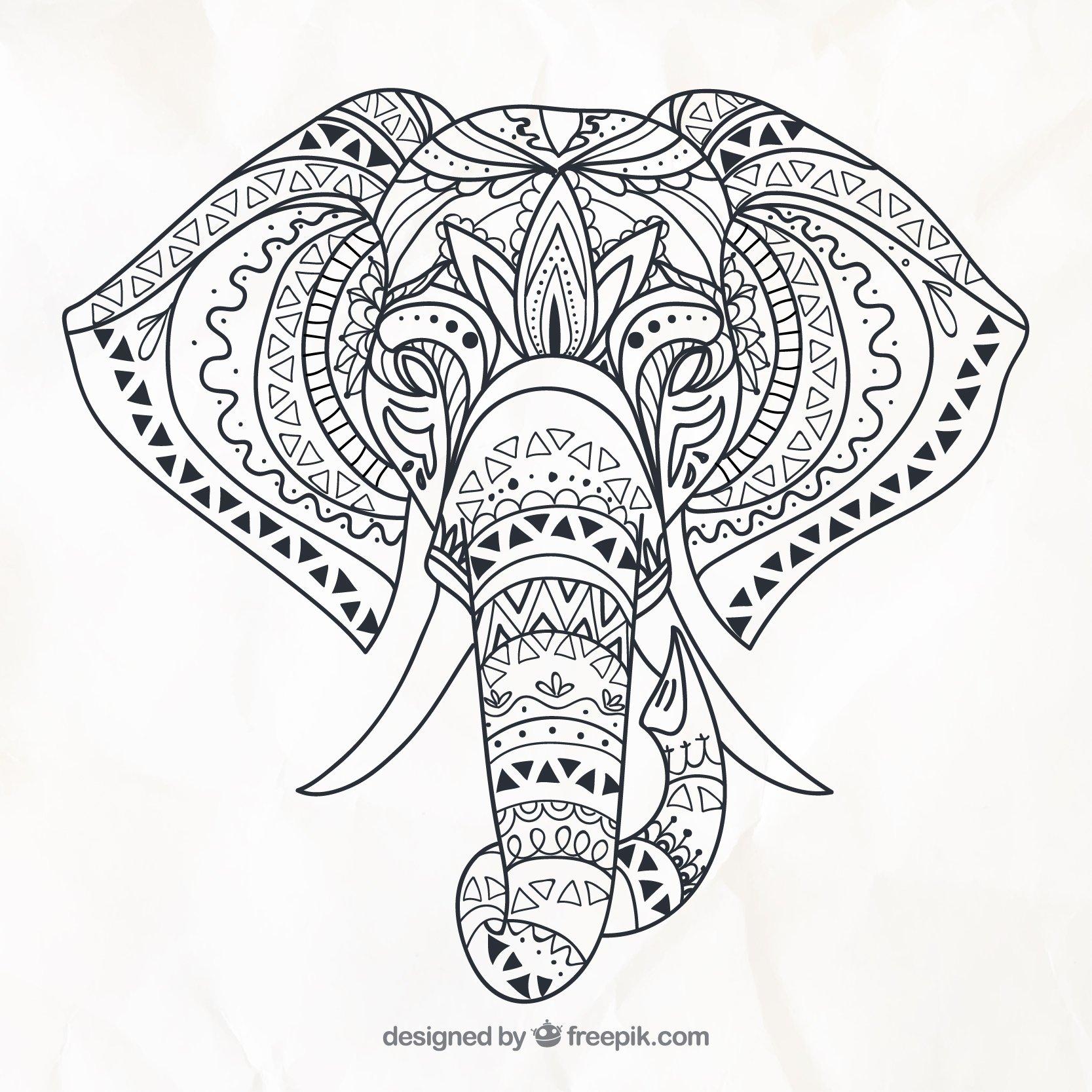 Indian Elephant Line Drawing Kolorowanka antystreso...