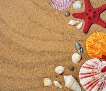 Malujemy piaskiem letnie dzieła sztuki