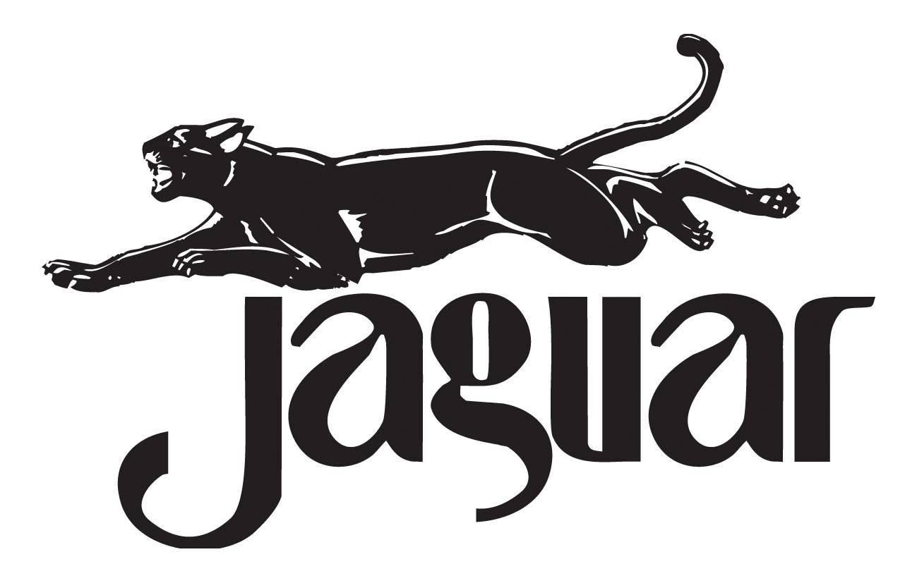 Znalezione obrazy dla zapytania wydawnictwo jaguar