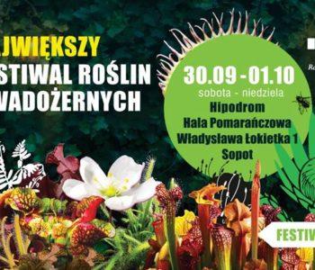 Festiwal roślin owadożernych w Sopocie
