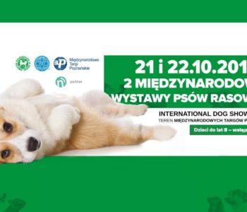2 Międzynarodowe Wystawy Psów Rasowych 2017
