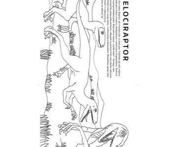 Darmowa kolorowanka z dinozaurem welociraptorem do ściągnięcia