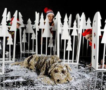 Baltic – pies na krze – spektakl dla dzieci