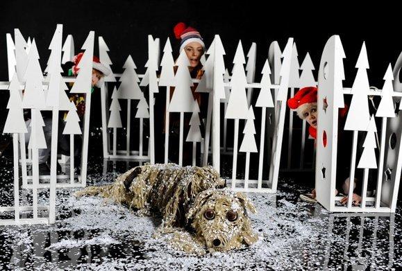 Baltic - pies na krze - spektakl dla dzieci