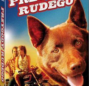 Przygody Rudego – pierwsza część hitu kinowego Wakacje z Rudym na DVD