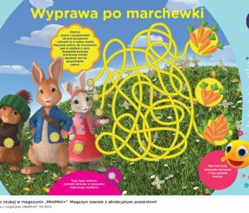 Piotruś królik labirynt do druku wyprawa po marchewki