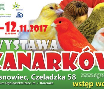 Wystawa kanarkóww Sosnowcu