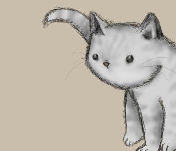 Pomóż kotu w wielkim mieście! Mikołów