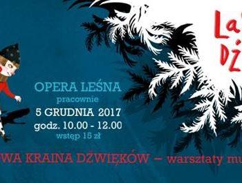 Zimowa kraina dźwięków - warsztaty muzyczne w Operze Leśnej