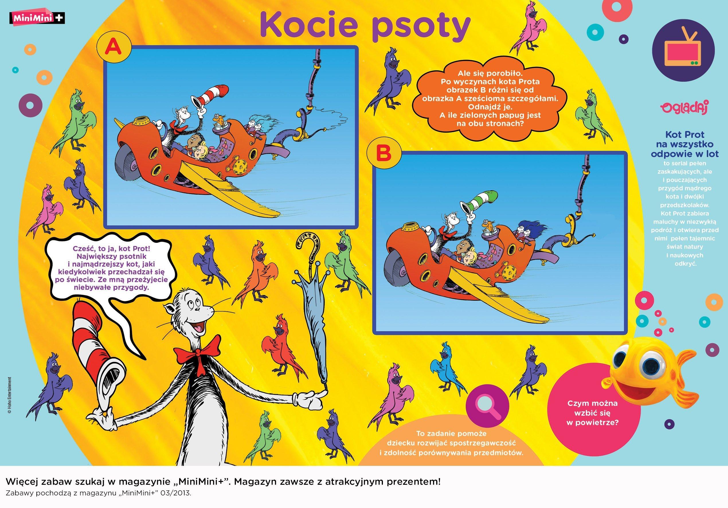 Kocie Psoty kota Prota zabawa do druku dla dzieci