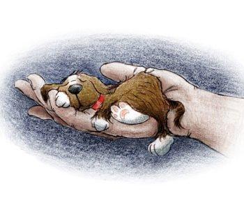 Syfon, pies taki jak Ty! – fragmenty książki