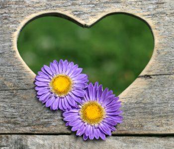 Piosenka Dla ukochanej babci tekst i melodia