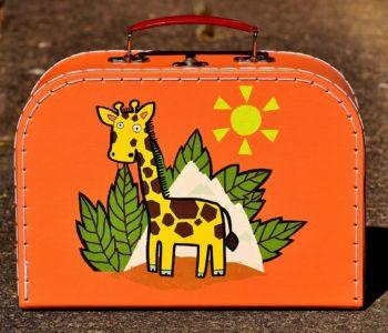 Plecak, torba i walizka